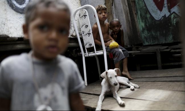 الصحة العالمية تعلن حالة طوارئ: زيكا تهديد عالمي