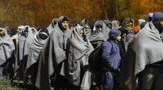 الهروب من الجنة: لاجئون في أوروبا يفكرون بالعودة