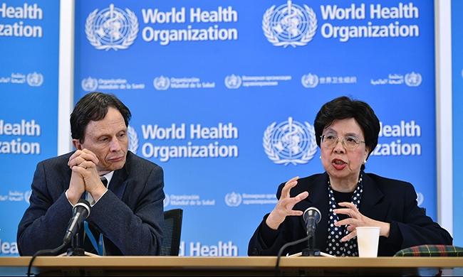 منظمة الصحة العالمية: علاقة سببية بين زيكا وعيوب خلفية