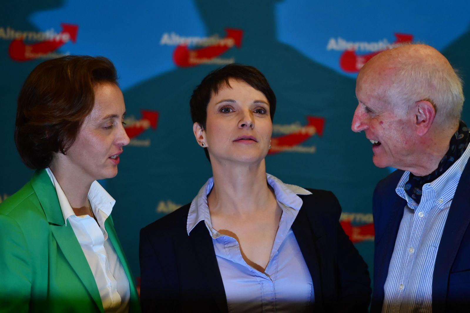 فروكي بيتري، زعيمة حزب 'البديل من أجل ألمانيا'