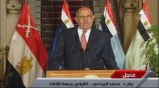 مصر: حذف اسم وصورة البرادعي من مناهج التعليم