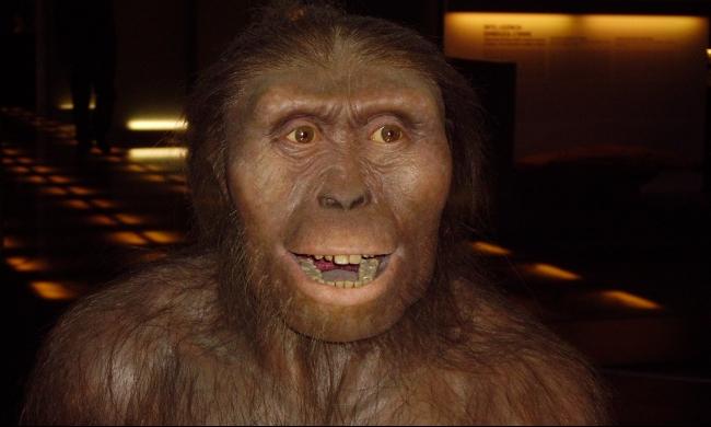 الإنسان العاقل تزاوج مع حيوانات منقرضة لفترات طويلة