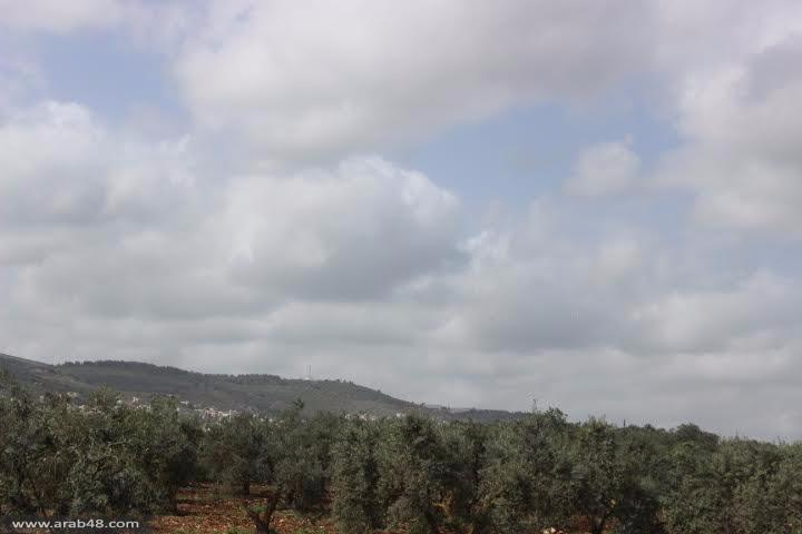 سخنين: شبيبة التجمع تفتتح معسكر الأرض الأول