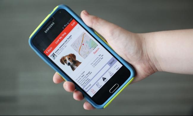 اعثر على كلبك الضائع بواسطة هاتفك الذكي