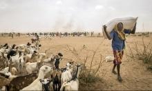عدد ضحايا مجزرة غامبيلا يرتفع إلى 208 قتلى
