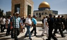 اقتحامات للأقصى وقبر يوسف وإبعادات عن القدس