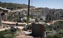 مخطط استيطاني يصادر 419 دونما من أراضي بيت إكسا ولفتا