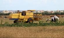 الاحتلال يطلق النار على مزارعين شرقي غزة