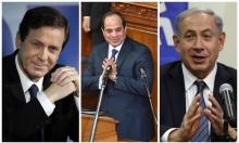 """""""أقوال السيسي هدفها تشكيل حكومة وحدة بإسرائيل"""""""