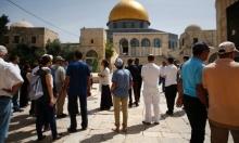 سياسة إسرائيل تجاه الأقصى/ د. محمود محارب