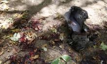 اليمن: مقتل ستة مدنيين بغارة للتحالف