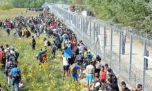 هنغاريا تعزز سياجها الحدودي لمنع دخول اللاجئين