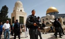 310 مستوطنين يقتحمون المسجد الأقصى