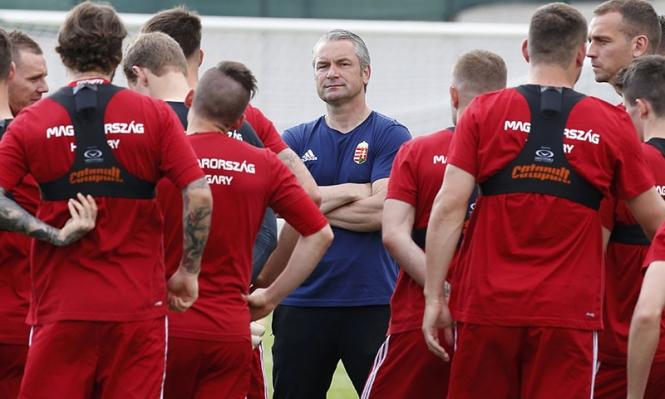 يورو 2016: بطاقة منتخب المجر