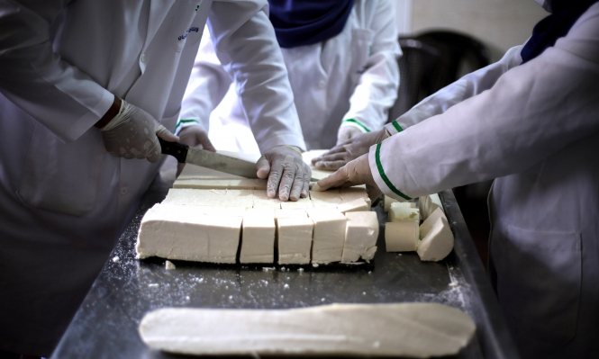 صنع في غزة: أجبان تقي من هشاشة العظام