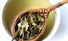 الشاي الأبيض.. فوائد عديدة وقيمة غذائية