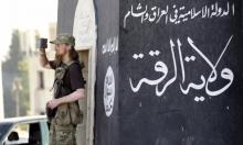 """""""داعش بمظهره الجديد أكثر شبهًا بالقاعدة"""""""