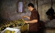 """""""الفسيخ"""": طبق الغزيين التقليدي صباح عيد الفطر"""