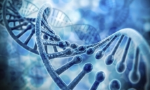 اكتشاف الجين المحفز على سرطان البروستات