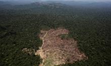 وظائف بيئية طبيعية مهددة بالزوال