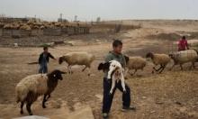 النقب: مخطط تهجير جديد لأهالي وادي النعم