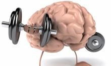 عمليات التفكير المعقدة تطور أدمغة الشباب