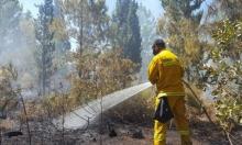 ميسر: اندلاع حريق هائل في منطقة حرشية