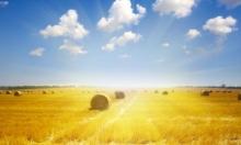 أجواء شديدة الحرارة: احذروا أشعة الشمس المباشرة
