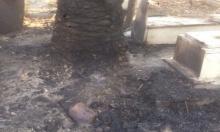 الرملة: الاعتداء على مقبرة النبي صالح