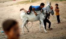 """مباحثات """"جدية"""" لحل أزمة المعاناة في قطاع غزة"""