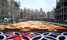 """افتتاح سجادة الزهور البلجيكية """"اليابانية"""""""