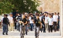 اقتحامات الأقصى تتجدد و15 مصابًا فلسطينيًا في الباحات
