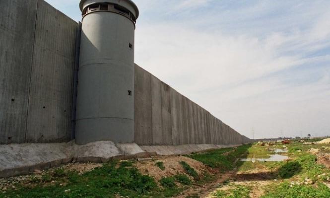 جدار الفصل العنصري يحرم مزارعي سلفيت من قطف ثمارهم