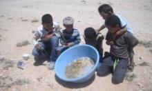 تونس: العقارب لمعالجة لسعات الحياة
