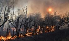 حريق كاليفورنيا يعجز الإطفاء ويجبر الآلاف على الفرار