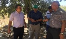 مجموعات يهودية تدنس مقبرة أم الشوف بالروحة