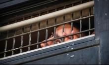 عدالة يطالب بتركيب مكيفات للأسرى الفلسطينيين