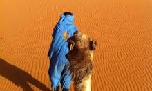 سماد طبيعي للغطاء الأمازوني: رمال الصحراء المغربية
