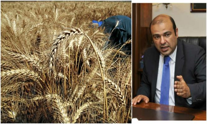 """مصر: تسلسل زمني لـ""""فضيحة فساد القمح"""""""