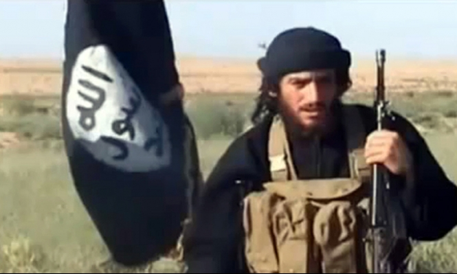 تأكيد أميركي على استهداف العدناني في سورية