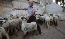 الفلسطينيون يستعدون للعيد وسط ظروف اقتصادية صعبة
