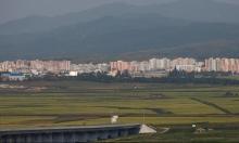 كوريا الشمالية: مصرع 133 وفقدان 395