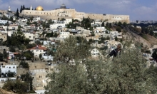 """""""زيتونة القدس"""": بوصلة شعرية نحو القضية الفلسطينية"""