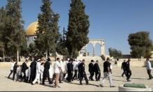 """اقتحامات اليهود للأقصى تتواصل بـ"""" السنة العبرية"""""""