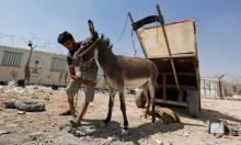 الحمير تعود وسيلة النقل الأهم في مخيم الزعتري