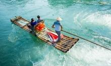 هل ينجح الخيزران بعبور المحيط الهادي؟