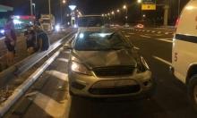 مفترق كفر مندا: 4 إصابات في حادث طرق بسبب... بقرة