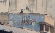 قلقيلية، فلسطين