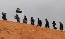 روسيا ترجئ قصفها لحلب وتركيا تصعد ضد داعش بسورية