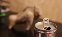 كيف تؤثر مشروبات الطاقة على جسم الإنسان؟